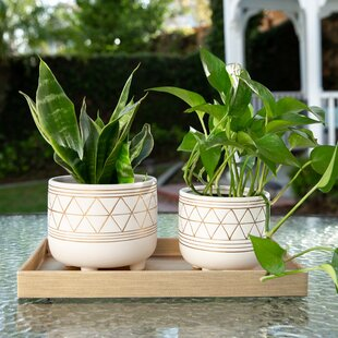 2 Pot Planters You Ll Love In 2021 Wayfair