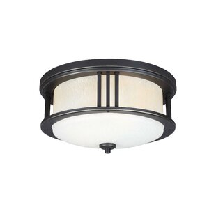 Darby Home Co Dunkley 2-Light Outdoor Flush Mount