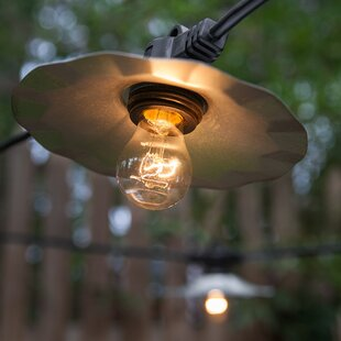 Wintergreen Lighting 15-Light Globe String Lights