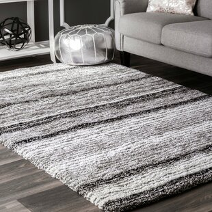 2 X 3 Striped Area Rugs You Ll Love In 2021 Wayfair