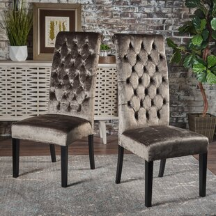 Petersburg Dining Chair (Set of 2) DarHome Co