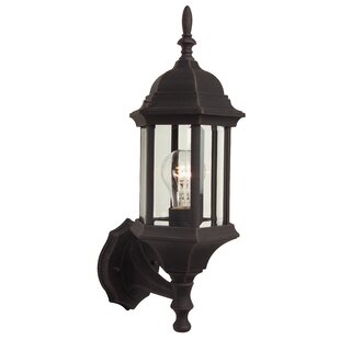 Breakwater Bay Frederica 1-Light Outdoor Sconce
