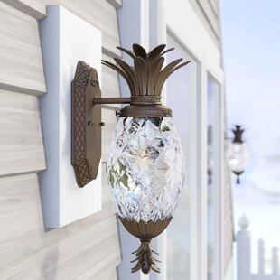 Beachcrest Home Terry 1-Light Outdoor Wall Lantern