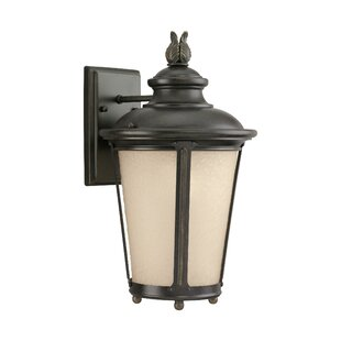Darby Home Co Islip 1-Light Outdoor Wall Lantern