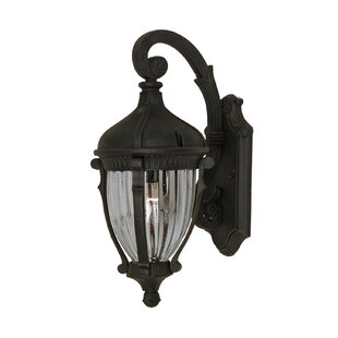 Huntington Outdoor Wall Lantern by Astoria Grand