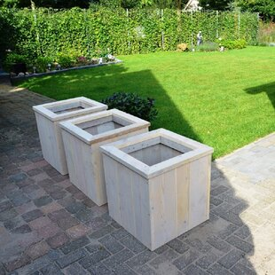 Naylor Wood Planter Box By Sol 72 Outdoor