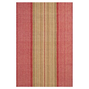 Online Reviews Hand Woven Cotton Red Area Rug By Dash and Albert Rugs