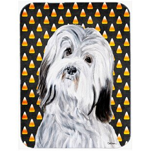 Review Halloween Candy Corn Havanese Glass Cutting Board By Caroline's Treasures