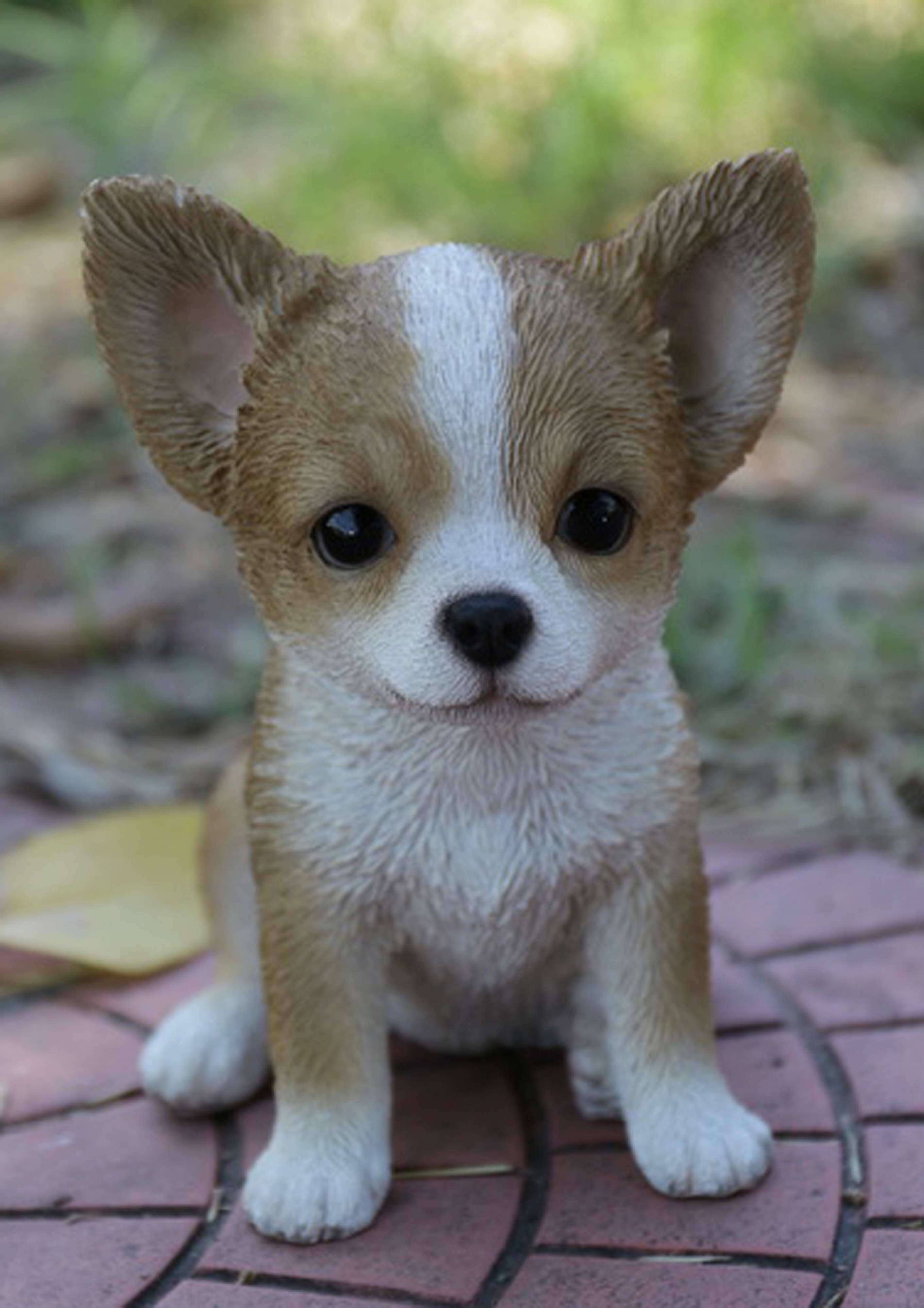 Brown And White Chihuahua Puppy Statue