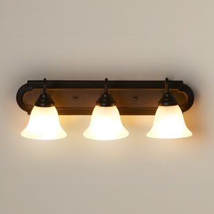 Birch Lane™ 3-Light Vani..