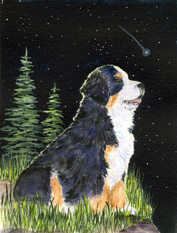 Starry Night Bernese Mountain Dog 2-Sided Polyester 40 x 28 in. House Flag