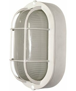 Royal Cove Oval 1-Light Outdoor Wall Lantern