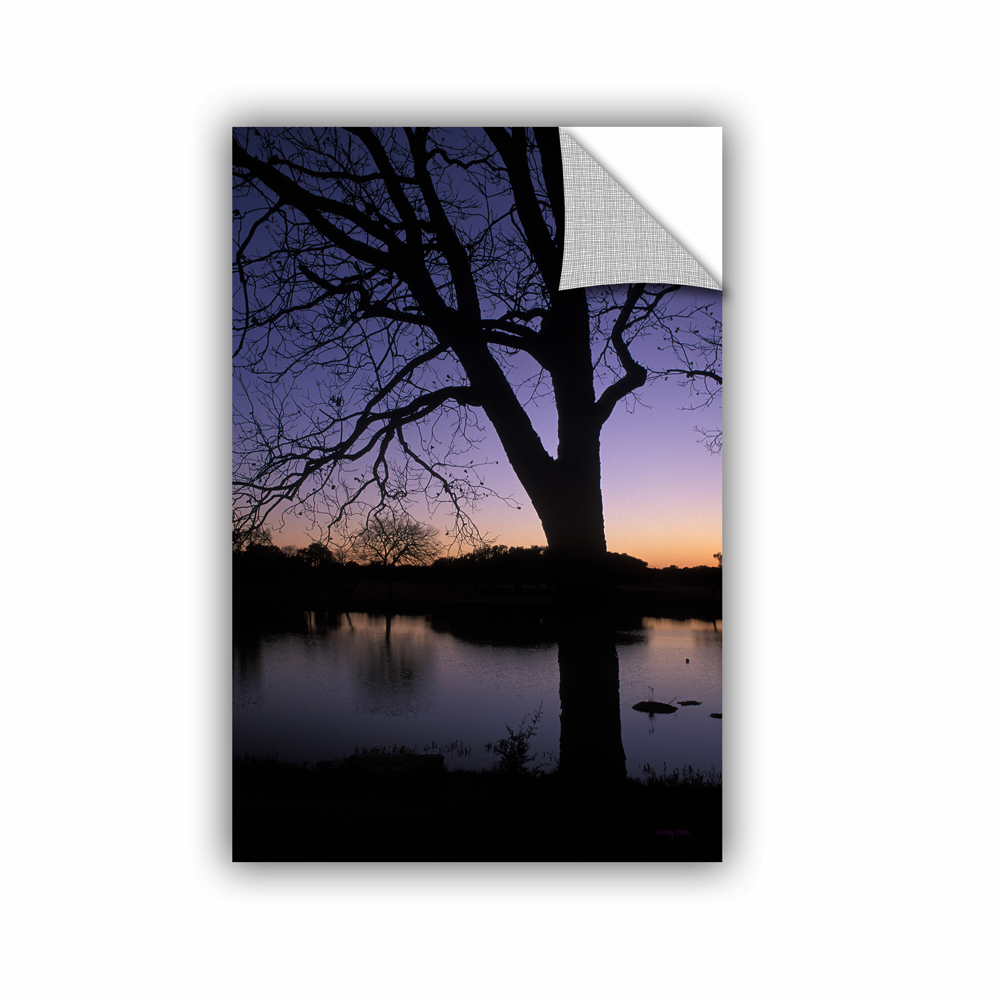 Artwall Texas Sunset On The Lake By Kathy Yates Photographic Printremovable Wall Decal Wayfair