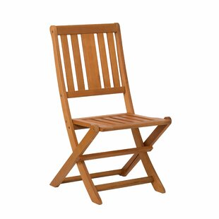 https://secure.img1-fg.wfcdn.com/im/72189935/resize-h310-w310%5Ecompr-r85/5305/53055167/hazeltine-folding-patio-dining-chair-set-of-2.jpg