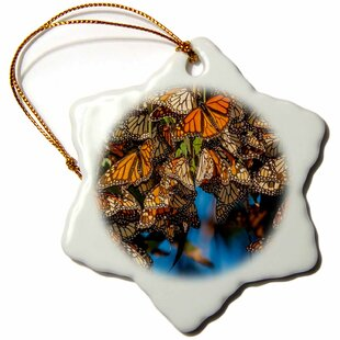 Monarch Butterfly Ornament Wayfair