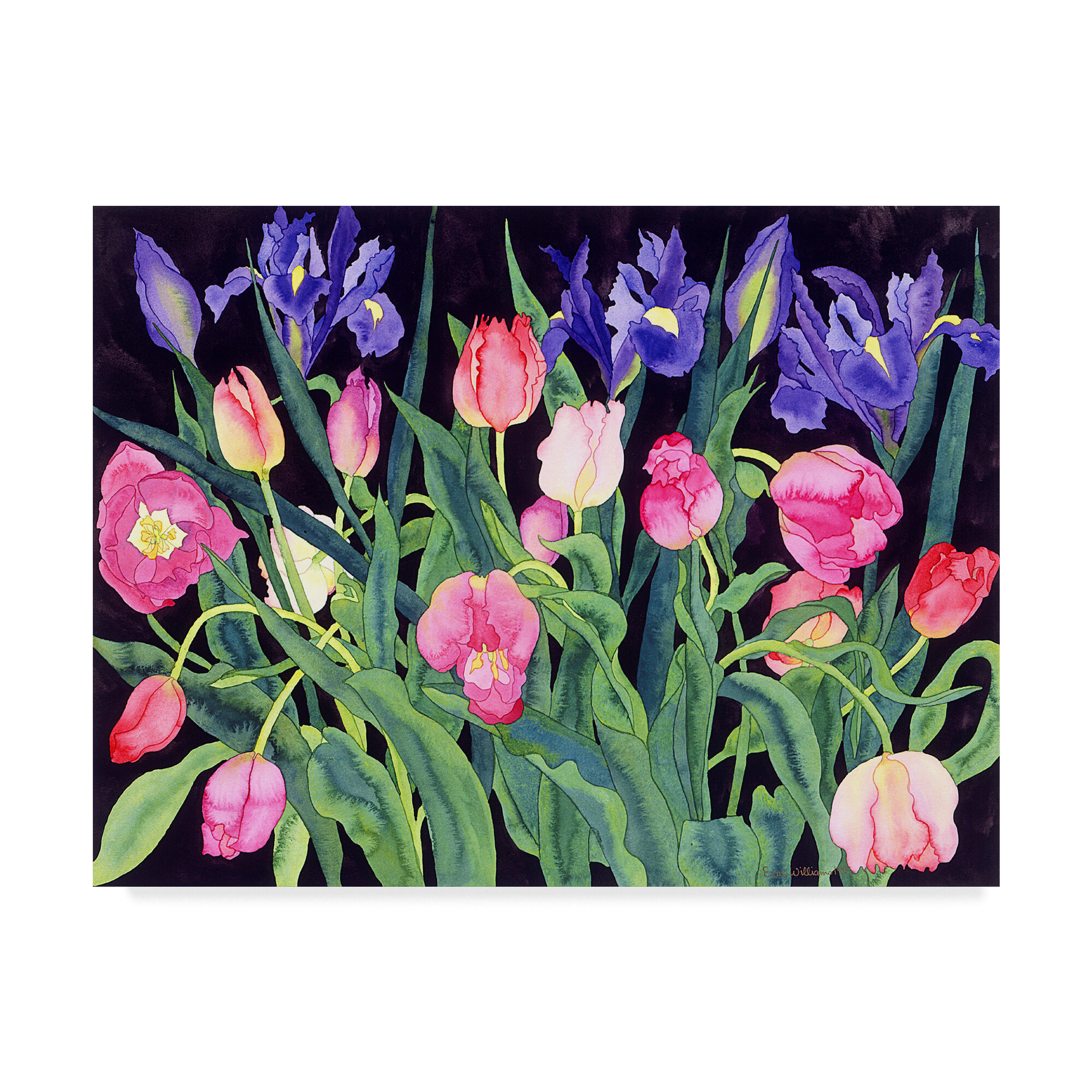 Trademark Art Tulips And Irises Oil Painting Print On Wrapped Canvas Wayfair