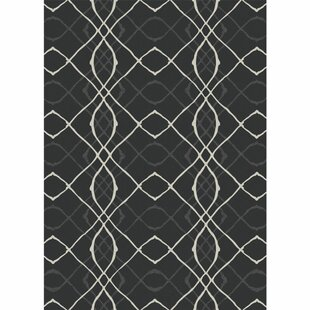 Amara Washable Black/White Indoor/Outdoor Area Rug Ruggable
