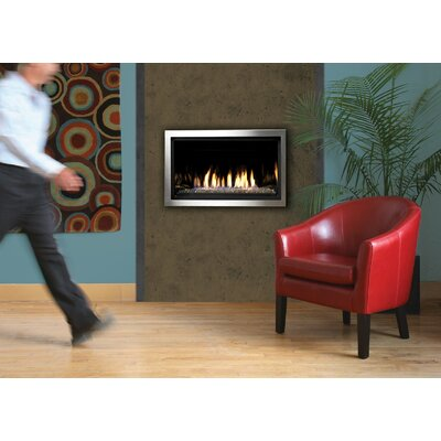 Direct Vent Natural Gas/Propane Fireplace Insert Kingsman Fireplaces Fuel Type: Natural Gas, Ignition Type: Remote Start (Millivolt)