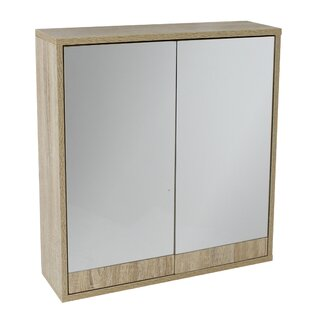 Conway 60cm X 60cm Surface Mount Mirror Cabinet By Alpen Home