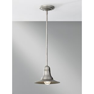 Williston Forge Abordale 1-Light Cone Pendant