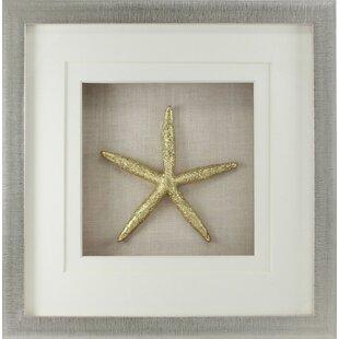 Nice Starfish Shadow Box Wall Décor