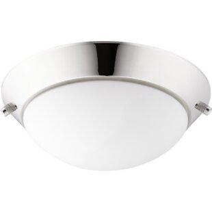 Globe ceiling fan light kits youll love wayfair lo prof 2 light globe ceiling fan light kit aloadofball Gallery