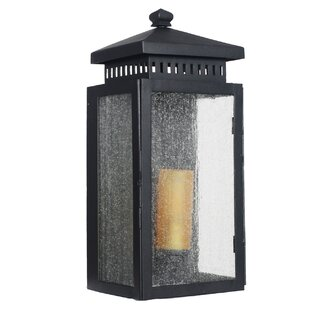 Reviews Sharpsville 1-Light Black Outdoor Wall Lantern By Darby Home Co