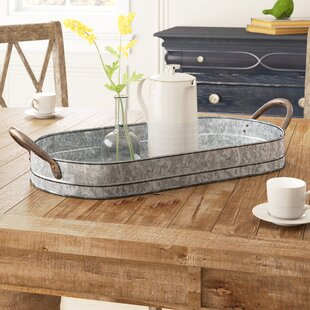 Inexpensive Paugh Galvanized Tray By Gracie Oaks