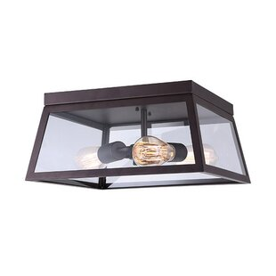 Williston Forge Allena 2-Light Flush Mount