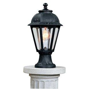 Rian 1-Light Pedestal Light By Sol 72 Outdoor