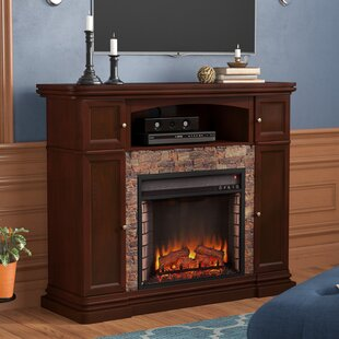 Juniper Court Media Electric Fireplace by Alcott Hill