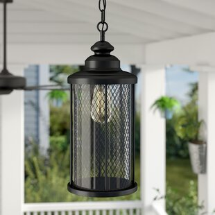 Great deal Torrence 1-Light Outdoor Hanging Lantern By Laurel Foundry Modern Farmhouse