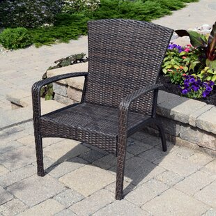 Breakwater Bay Truesdell Wicker Adirondack Chair