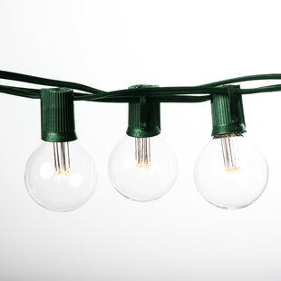 Hometown Evolution, Inc. Globe String Lights