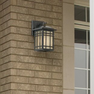 Woodard 1-Light Outdoor Wall Lantern in Bronze