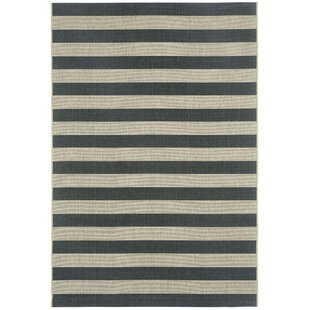 Palm Cove Cinders Black/Beige Striped Indoor/Outdoor Area Rug