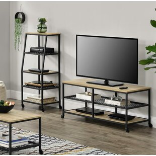 Affordable Price Parrott Entertainment Center for TVs up to 55 by Williston Forge Reviews (2019) & Buyer's Guide