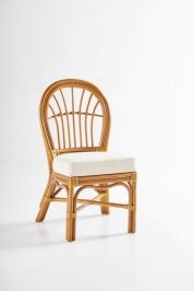 Strachan Patio Dining Chair with Cushion