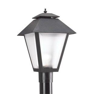 Winston Porter Janiyah 1-Light Lantern Head