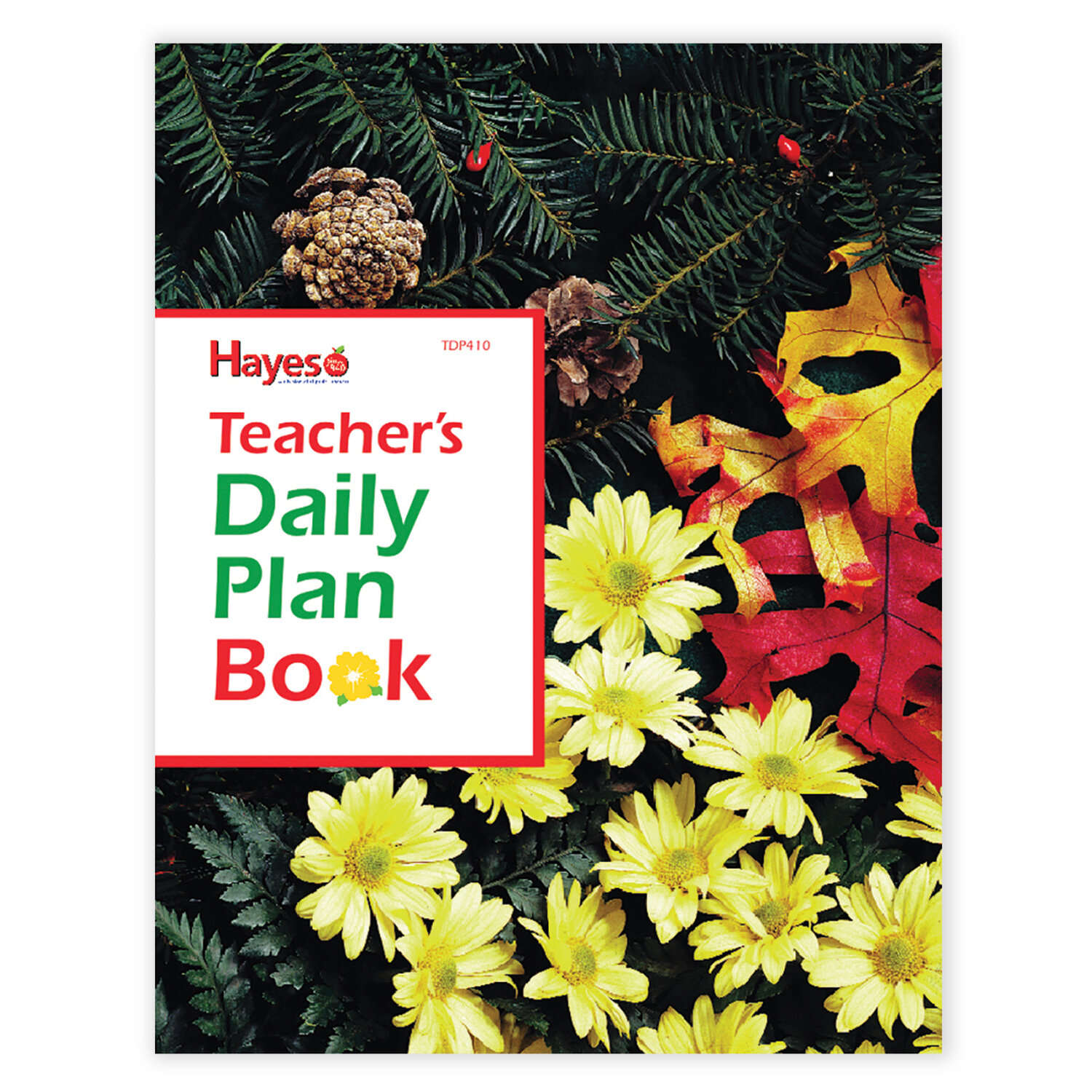 hayes school publishing teachers daily lesson planner reviews