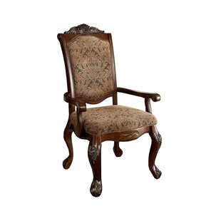Barrville Arm Chair (Set of 2) by Astoria..