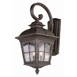 Darby Home Co Freeborn Wall Lantern