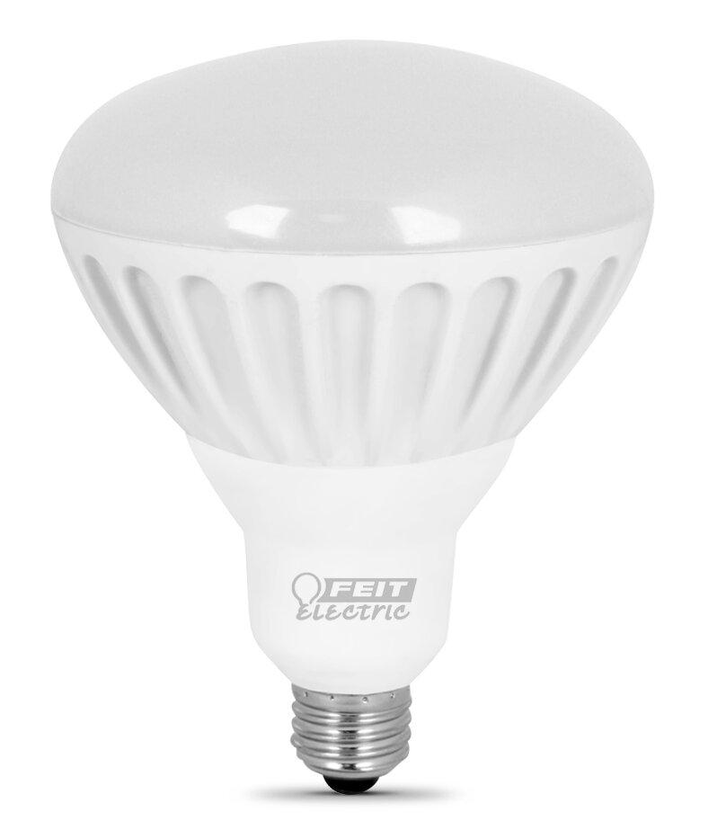 Feit Electric 65w 2700k Led Light Bulb Pack Of 2