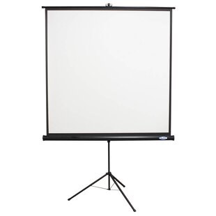 Matte White Portable Projector Screen