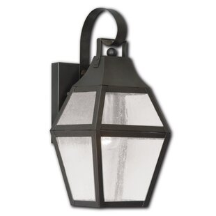 Darby Home Co Eberhardt 1-Light Outdoor Wall Lantern