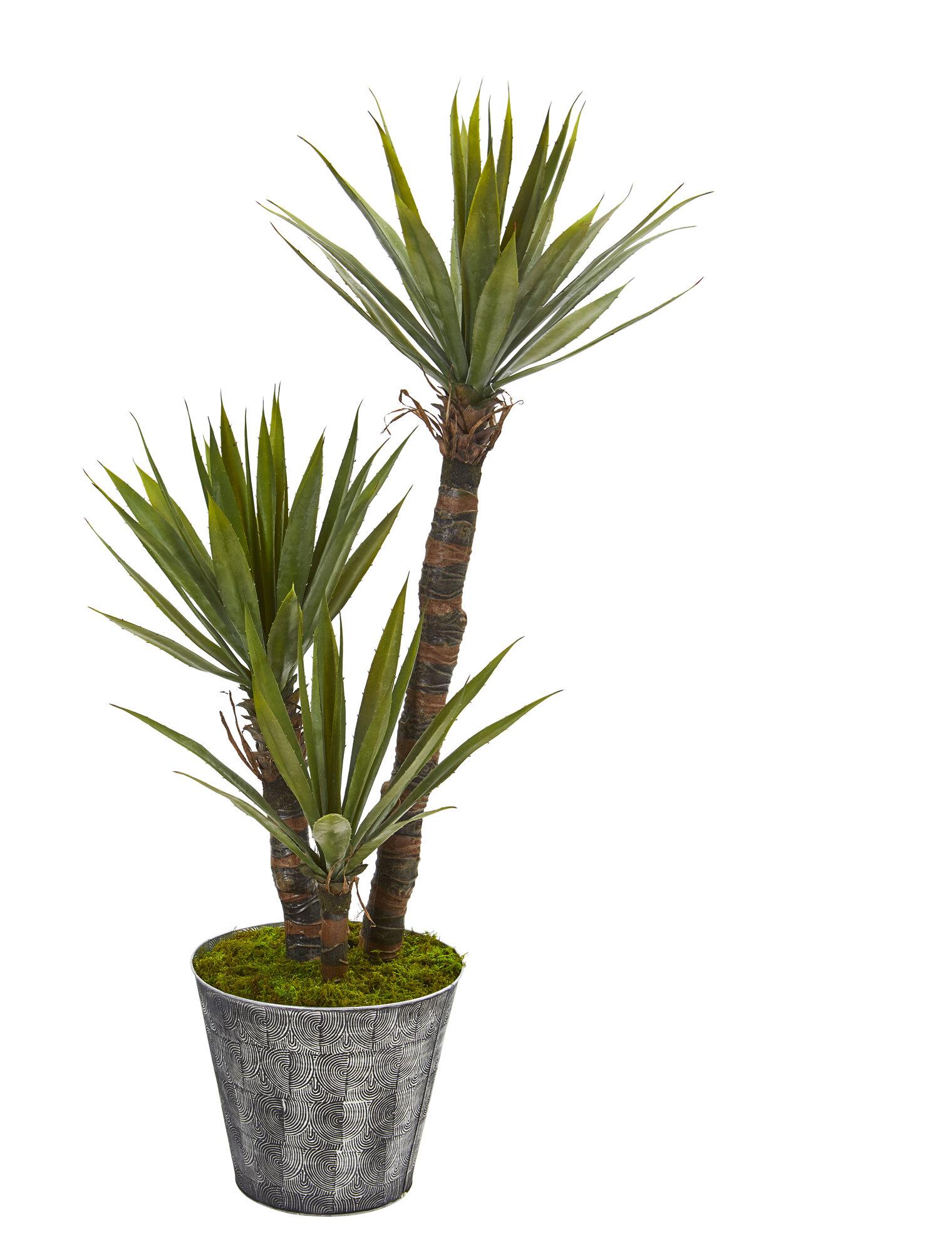 Williston Forge 40 Artificial Yucca Tree In Planter Wayfair
