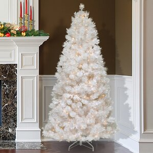 75 white grande slim artificial christmas tree with 500 pre lit clear lights with - Christmas Tree White