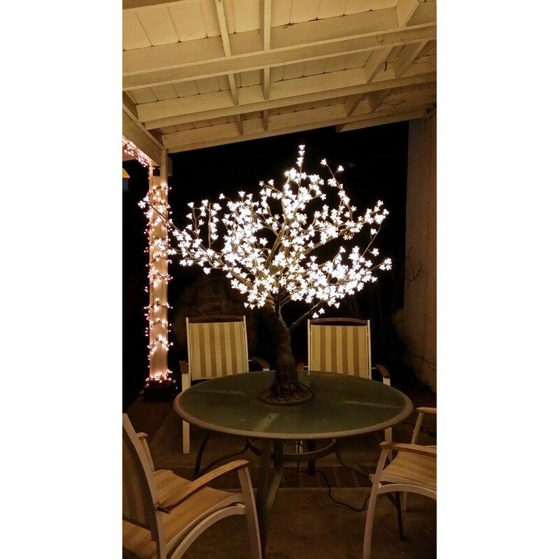 Illuminated Trees 5 Foot Cherry Blossom Tree Clear Cherry Flower Warm White Led Lights Wayfair