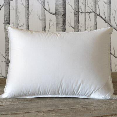 Shop Eastern Accents Bed Pillows on