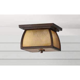 Darby Home Co Bridgwater 2-Light Outdoor Flush Mount
